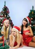 穿圣诞老人衣裳的三个性感的女孩 免版税库存照片