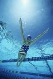 穿在水池的游泳者美国泳装 图库摄影
