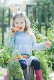 穿复活节兔子服装的学龄前儿童白肤金发的女孩咬新鲜的红萝卜 免版税库存图片