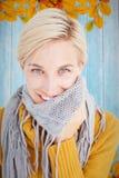 穿她的围巾的逗人喜爱的妇女的综合图象 免版税库存图片