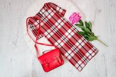 穿戴在笼子一个白红色和红色袋子,在白色毛皮的牡丹 时兴的概念 免版税库存图片