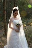 穿新娘婚装的愉快的亚裔新娘stnading在杉木森林里 图库摄影
