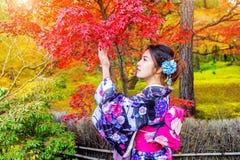 穿日本传统和服的亚裔妇女在秋天公园 日本 免版税库存照片