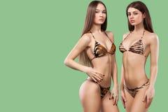 穿泳装的两名性感的深色的妇女隔绝在绿色背景 理想的机体 比基尼泳装夏天广告概念 库存图片