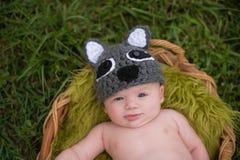 穿浣熊服装的机敏的男婴 免版税库存图片