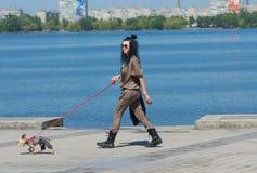 穿牛仔裤的上等的约克夏狗狗在德聂伯级市,乌克兰带领德聂伯级河堤防的时髦的女人 库存图片