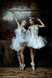穿着白色芭蕾舞短裙裙子的两名美丽的妇女 库存图片