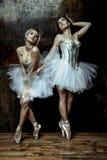 穿着白色芭蕾舞短裙裙子的两名美丽的妇女 库存照片