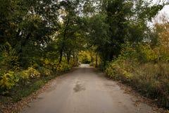 穿着考究的道路在公园在秋天 库存图片