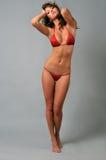 穿红色比基尼泳装的一个美丽的性感的女孩的画象 免版税库存照片