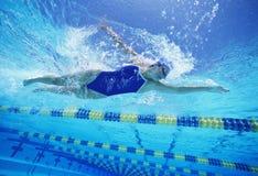 穿美国泳装的女性游泳者,当游泳在水池时 免版税库存图片