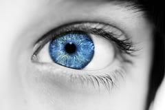 穿蓝衣的男孩眼睛 库存图片