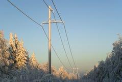 穿过一块沼地的高压主输电线在冬天森林里 库存照片