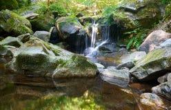 穿过岩石的河以forrest的绿色 库存照片