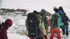 穿过干草原的小组登山人撒布与雪 在人重的背包、缆绳、设备和盔甲 影视素材