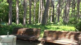 穿过桑丹斯基镇的Sandanska Bistritsa河  股票视频