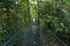 穿过热带森林的金属吊桥 免版税库存照片