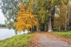 穿过秋天公园的道路 免版税图库摄影