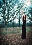 穿黑礼服的逗人喜爱的goth女孩在秋季树中站立 库存图片