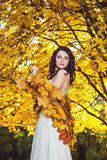 突出在一个公园的端庄的妇女在秋天 库存照片