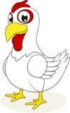 突出在白色的鸡 免版税库存图片