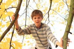 突出在结构树的男孩 免版税库存图片
