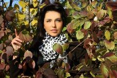 突出妇女年轻人的美丽的叶子 库存照片