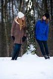 突出结构树冬天的siters 免版税库存图片