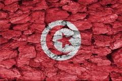 突尼斯旗子纹理  库存照片