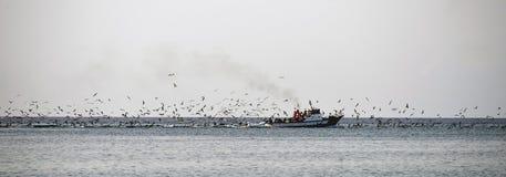 突尼斯渔船 免版税库存照片