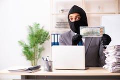 窃取从办公室的男性匪徒信息 库存图片