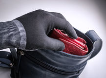 窃取妇女的钱包的手套的人手 免版税图库摄影
