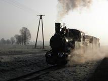 窄片蒸汽铁路火车 免版税库存图片