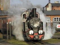 窄片蒸汽铁路火车 免版税库存照片