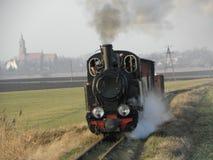 窄片蒸汽铁路火车 免版税图库摄影
