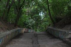 窄路通过春天晚上时间的黑暗的森林 免版税库存照片