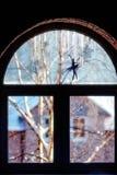 窗口与艺术一晴朗的冬日 免版税库存图片