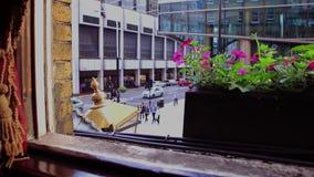 窗口和好的大城市全景  股票录像