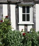 窗口和玫瑰丛 库存图片