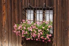 窗口和粗砺的木墙壁有花的在传统wabi-sabi样式 库存照片