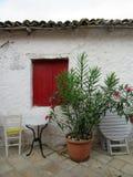 窗口和花盆 库存图片