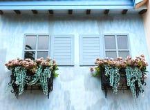 窗口和花箱子 免版税图库摄影