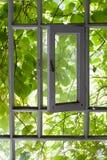 窗口对夏天 免版税图库摄影