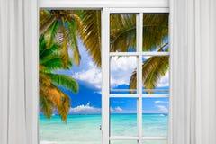 窗口开放棕榈滩 免版税图库摄影
