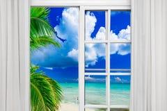 窗口开放棕榈滩 库存图片