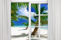 窗口开放棕榈滩 免版税库存图片