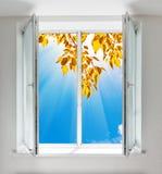 从窗口的秋天视图 免版税库存照片