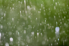 窗口雨 免版税库存图片