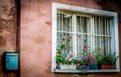 窗口 免版税库存照片