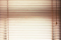 窗帘打开有在葡萄酒的迷离自然视图背景 免版税库存照片